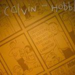 Calvin & Hobbes Comics